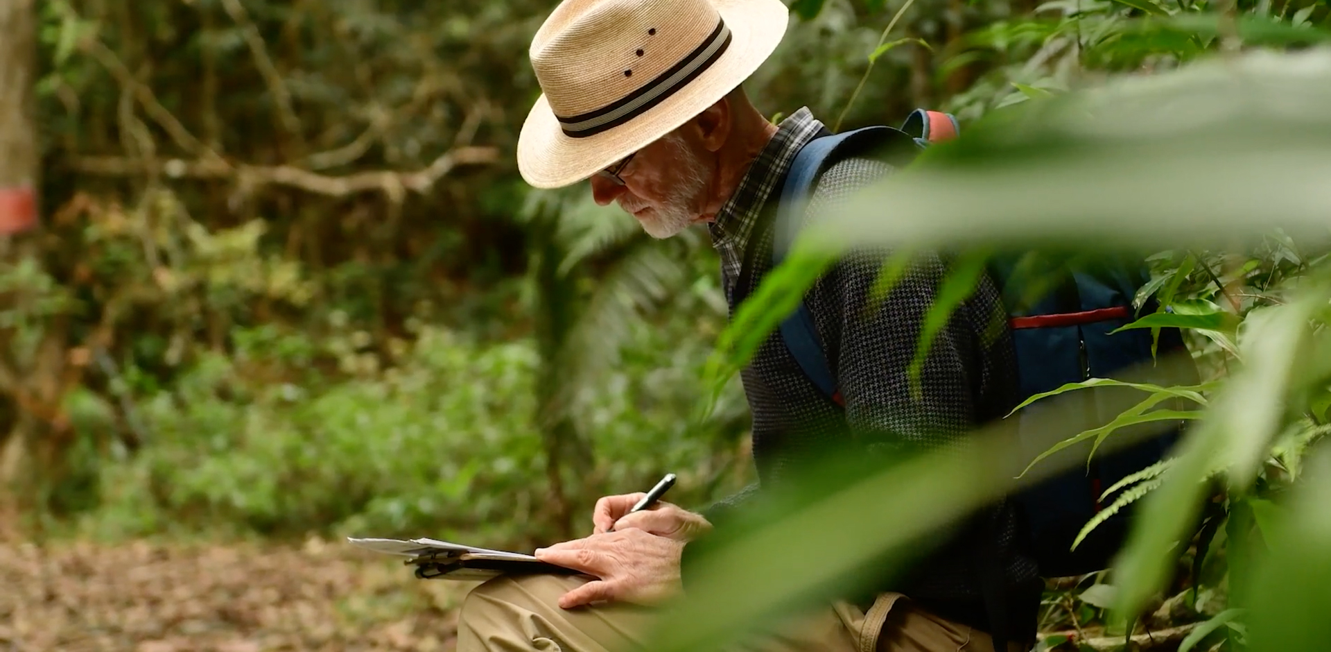 Peter Chesson is seen writing notes while in conducting research in the jungle